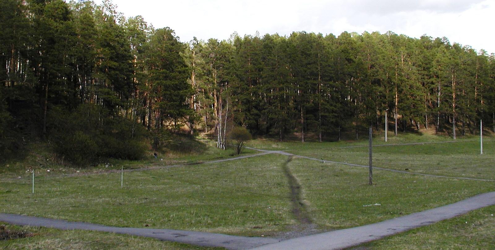 В Трёхгорном лыжероллерную трассу будут строить в два этапа